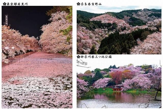 https://toyo-kenso.co.jp/files/libs/717/20180328150253954.jpg